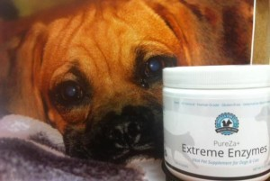 PFL.EXTREME.ENZYMES.AND.DOG